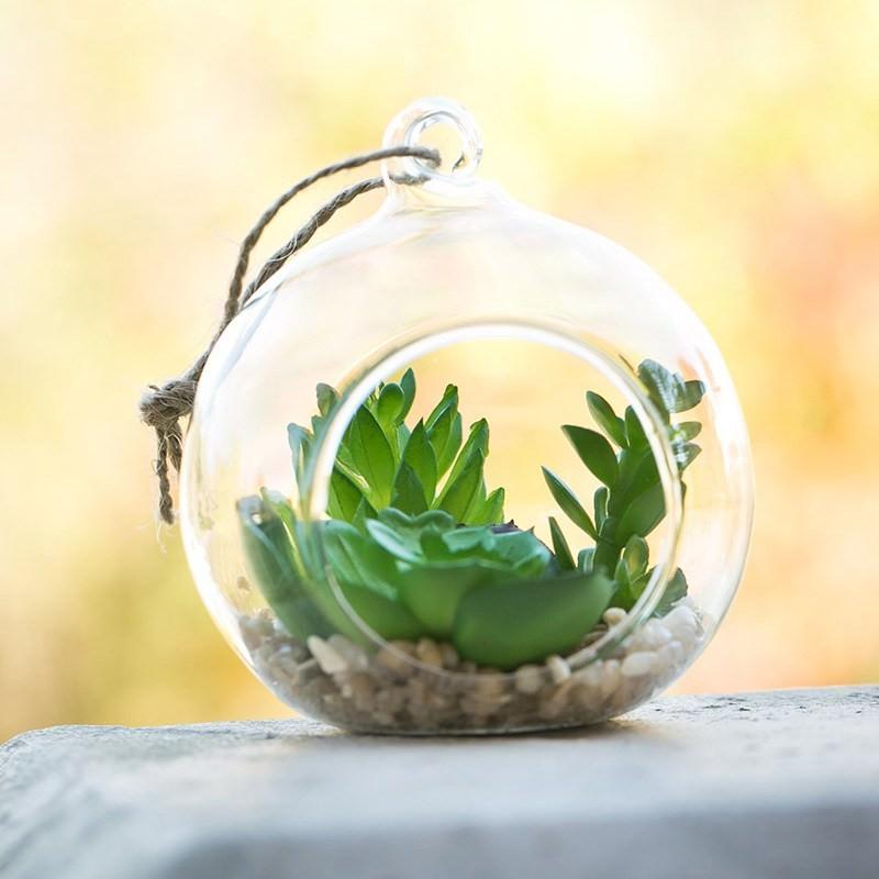 Artificial Miniature Plants In Hanging Glass Terrarium C
