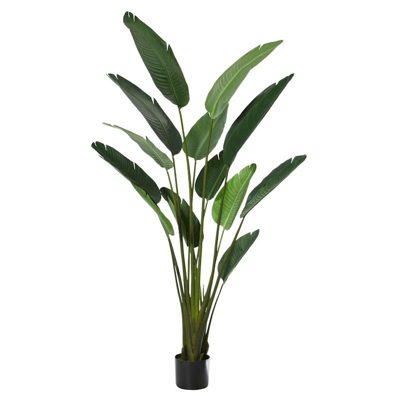Potted Artificial Bird of Paradise Plant, Type A, 183cm