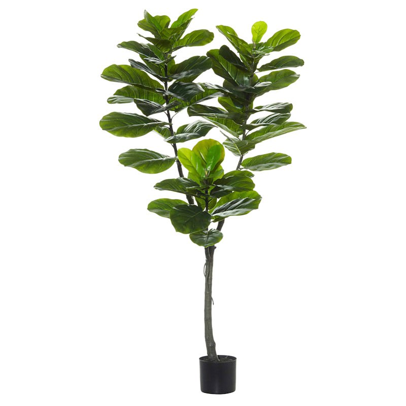 Potted Artificial Fiddle Leaf Fig Tree, Type A, 150cm