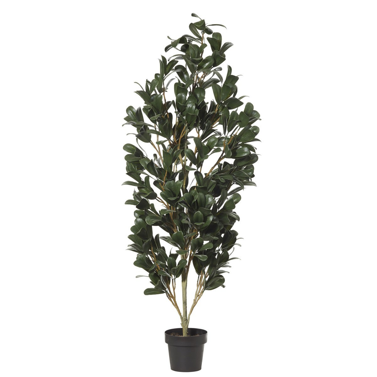 Potted Artificial Magnolia Tree, 159cm