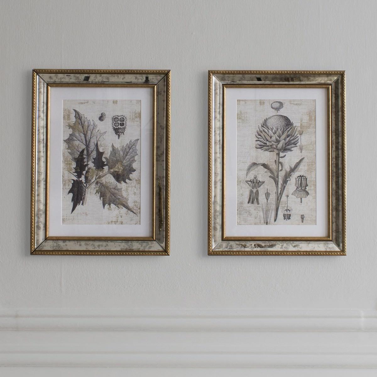Fremont Botanical Studies 2 Piece Framed Wall Art Set