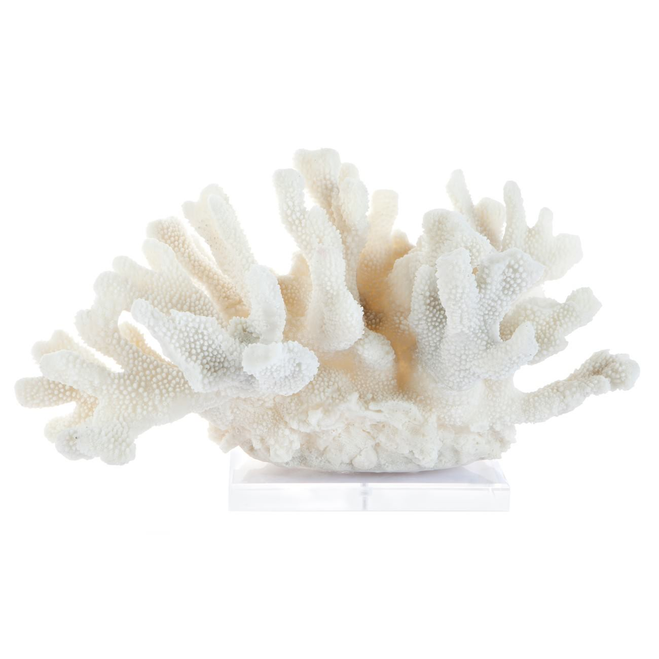 Cairns Coral Sculpture, Large, White