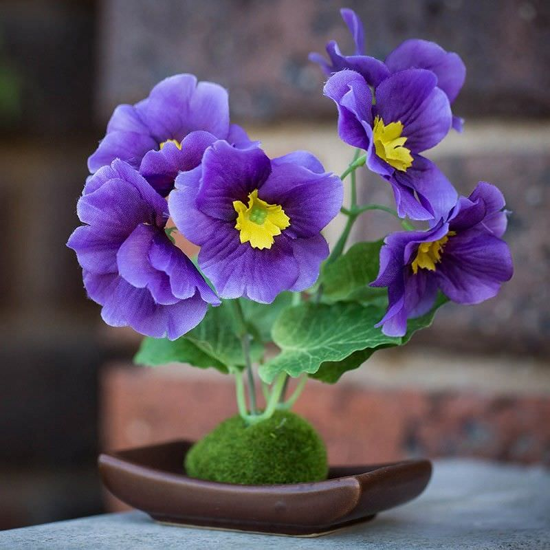Set of 4 Artificial Table Poppy - Purple