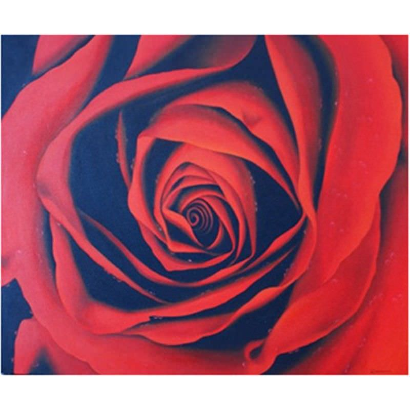 Simply Rose - Hand Painted - 120x100cm