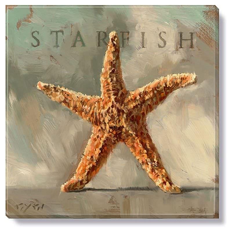 Bayport Stretched Canvas Wall Art Print, Starfish, Small