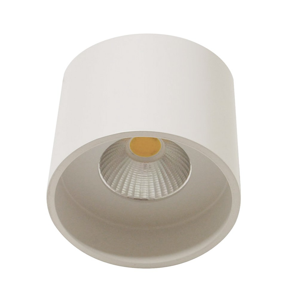 Keon Surface Mount LED Downlight, 3000K, Large, White