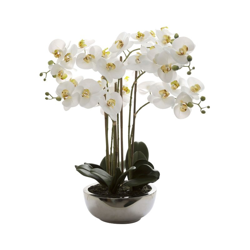 Grimes Artificial Phalaenopsis Orchid in Ceramic Pot
