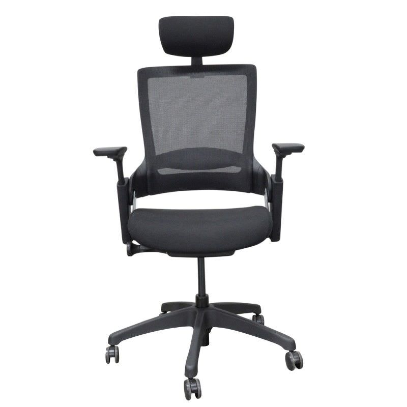 Merna Mesh Fabric Ergonomic Office Chair with Head Rest, Black