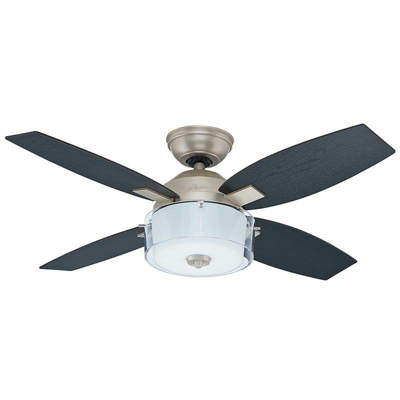 Hunter Central Park Pewter Ceiling Fan with Black Oak / Roasted Oak Switch Blades