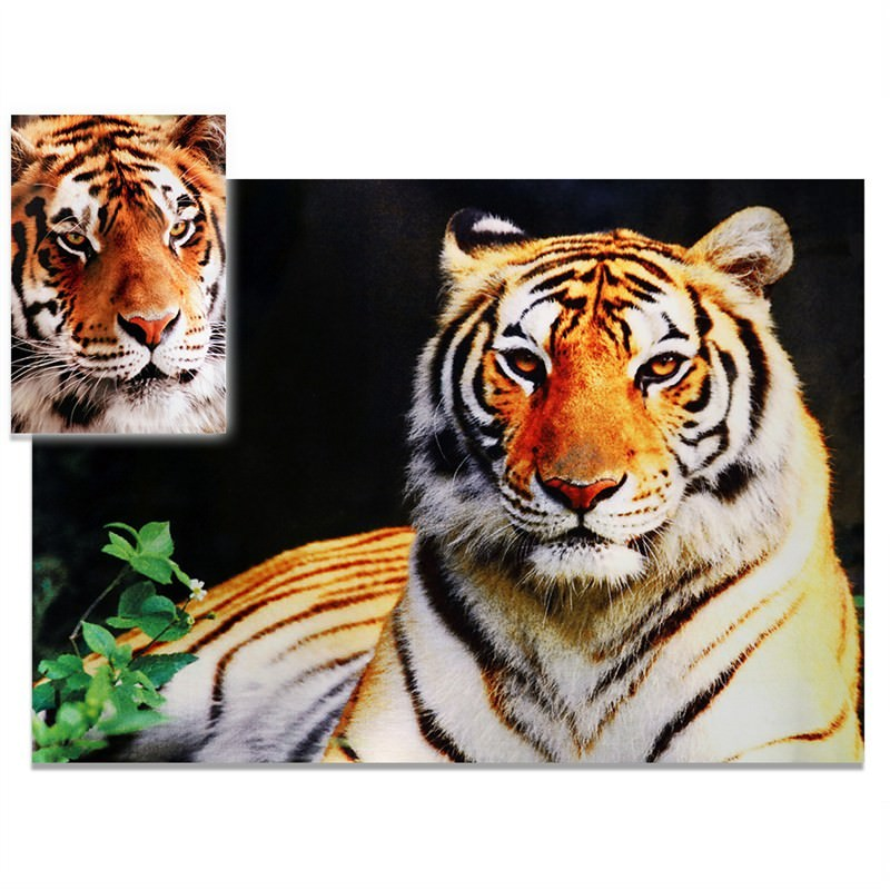 Prodigy Tiger Rug With Canvas