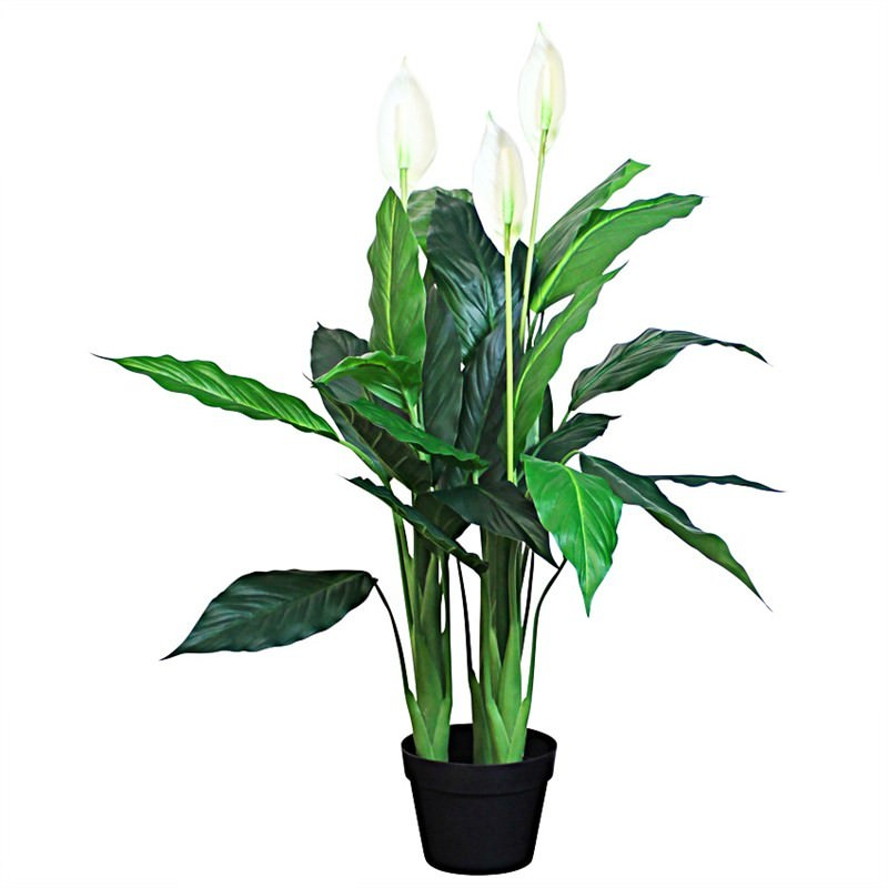 Artifical Spathiphyllum in Pot