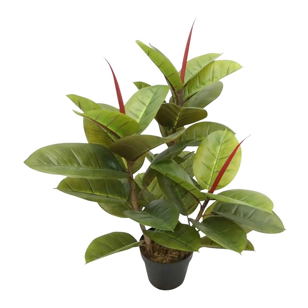 Potted Artificial Rubber Tree, 80cm