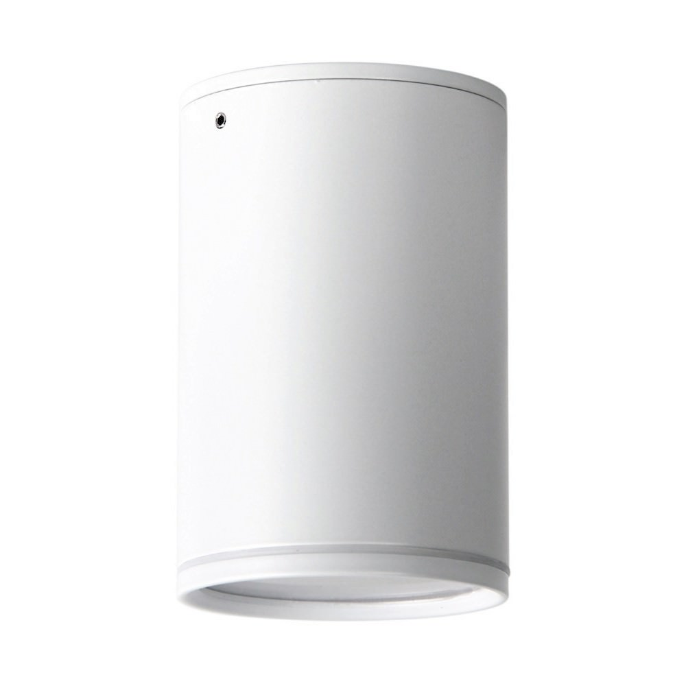 Entas IP44 Indoor / Outdoor Surface Mounted LED Downlight, White