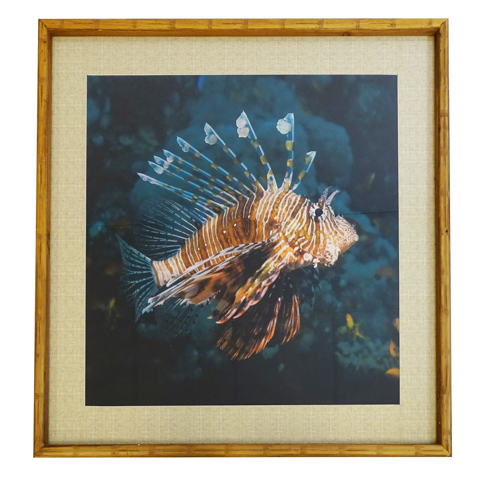 Chavez Bamboo Framed Wall Art Print, Lion Fish, 100cm