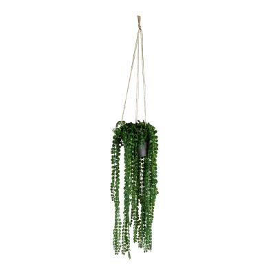 Hanging Potted Artificial Coin Leaf Peperomia, 80cm