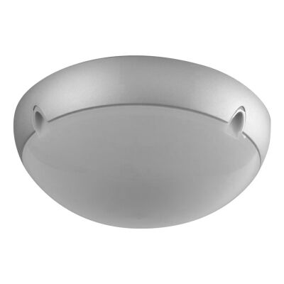 Polydome IP66 Italian Made Exterior Ceiling Light, Medium, Silver