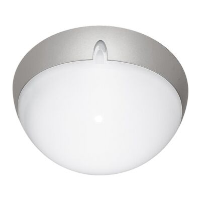 Polydome IP66 Italian Made Exterior Ceiling Light, Small, Silver