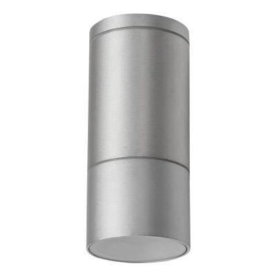 Elite IP54 Exterior Surface Mounted Downlight, Anodised Aluminium