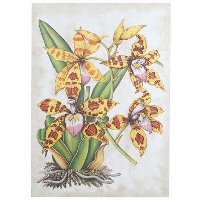 Spider Orchid Artwork, 122cm