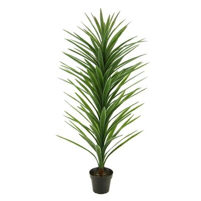Potted Artificial Brazilian Yucca, 137cm
