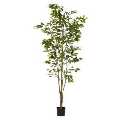 Potted Artificial Ficus Tree, 183cm