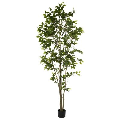 Potted Artificial Ficus Tree, 213cm