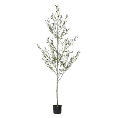 Potted Artificial Olive Tree, 200cm