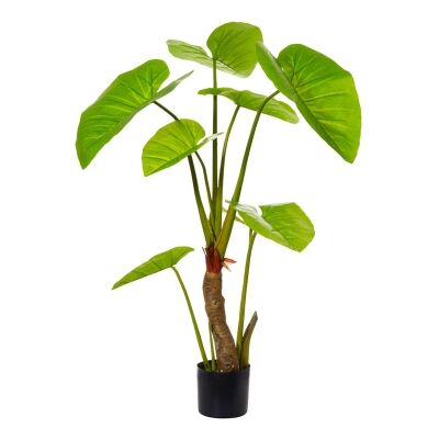 Potted Artificial Taro Plant, 165cm