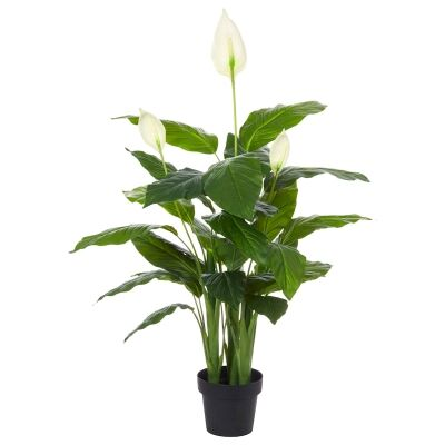 Potted Artificial Spathiphyllum Plant, 130cm