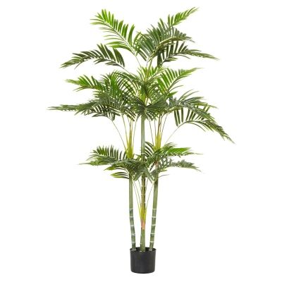 Potted Artificial Cane Palm Tree, Type B, 153cm