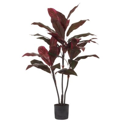 Potted Artificial Cordyline Tree, 135cm