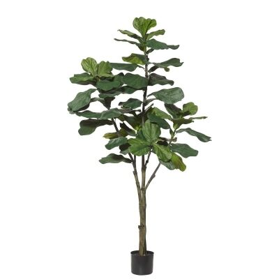 Potted Artificial Fiddle Leaf Fig Tree, Type B, 180cm