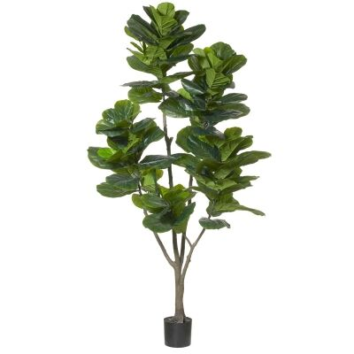 Potted Artificial Fiddle Leaf Fig Tree, Type C, 210cm