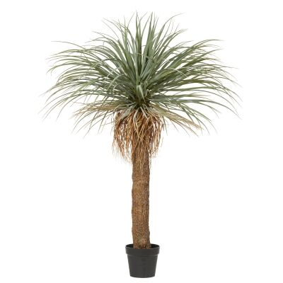 Potted Artificial Grass Tree, 145cm