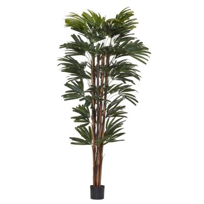 Potted Artificial Rhapis Palm Tree, 180cm