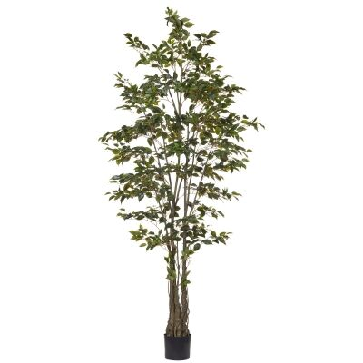 Potted Artificial Ficus Benjamina Tree, 240cm