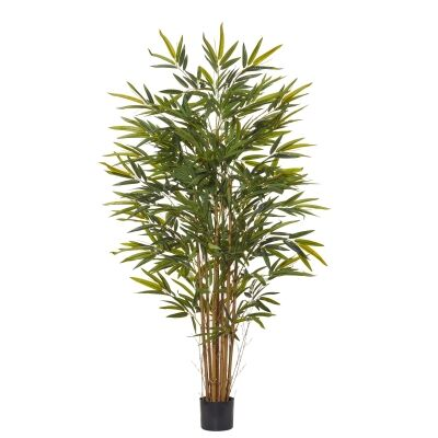 Potted Artificial Common Bamboo Tree, 153cm