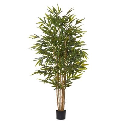Potted Artificial Common Bamboo Tree, 183cm