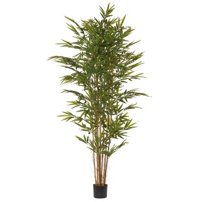Potted Artificial Common Bamboo Tree, 214cm