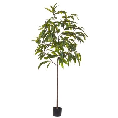 Potted Artificial Ficus Alli Tree, 200cm