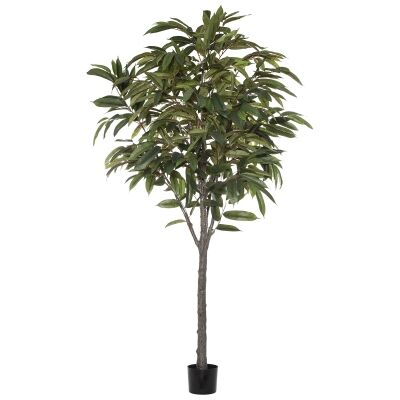 Potted Artificial Ficus Alli Tree, 182cm