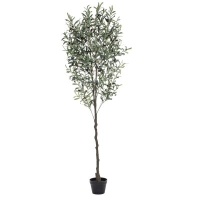 Potted Artificial Olive Tree, 180cm