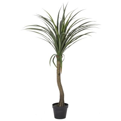 Potted Artificial Yucca Tree, 132cm