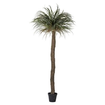 Potted Artificial Grass Tree, 228cm