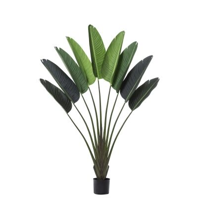 Potted Artificial Travellers Palm, 160cm