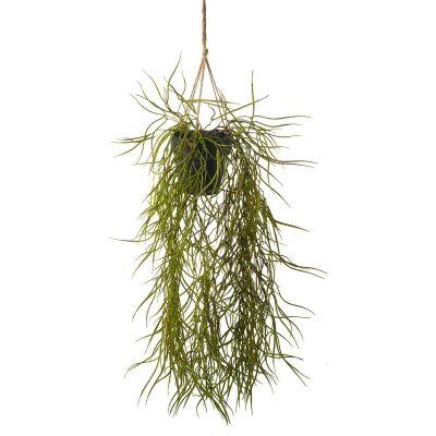 Artificial Hoya in Hanging Pot, Set of 2