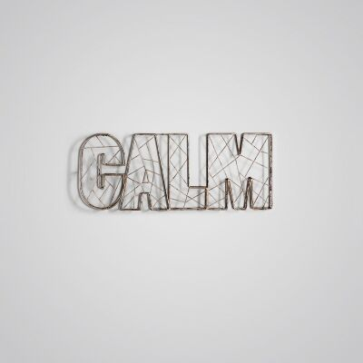 Calm Metal Wire Statement Wall Art