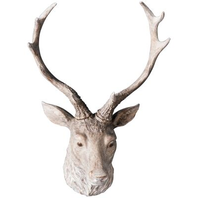 Arey Stag Head, White Wash