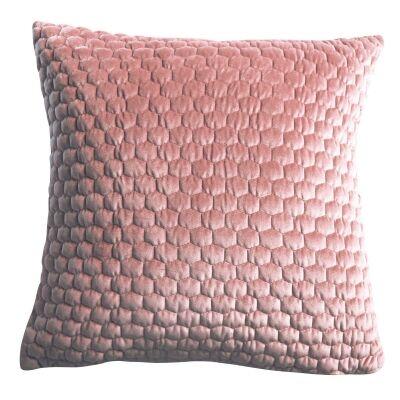 Landseer Feather Filled Scatter Cushion, Blush