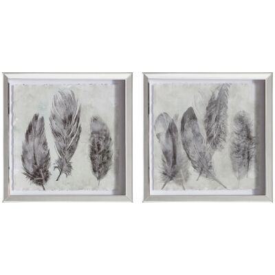 Painted Plumes 2 Piece Mirror Framed Wall Art Print Set, 44cm
